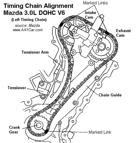 3 1 liter engine diagram timing chain get free image