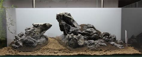Soil Aquascape sand und soil aquascaping wiki