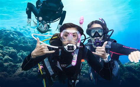 dive dive dive learn to dive 3 ways to get started scuba diving