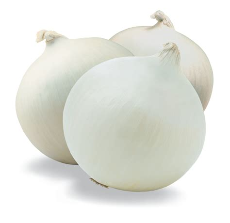 onion links onion links newhairstylesformen2014 com