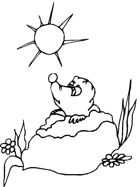ghd7 groundhog coloring pages coloring book