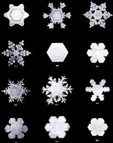 Bentley Snowflakes Far Regular For Any Substance Meant To Live Lypophrenia