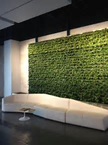 Living Wall Indoor Living Walls Versawalls Interior Plant Design Los