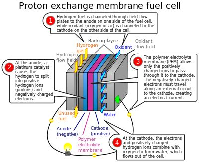 membrane layout design number fuel cell wikipedia