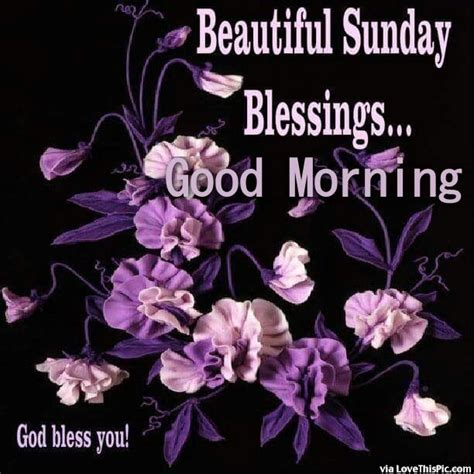 sunday good morning beautiful beautiful sunday blessings good morning pictures photos