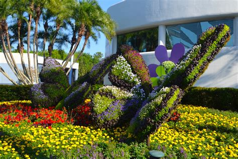 flower gardens in orlando harry p leu gardens orlando flower garden in orlando epcot flower