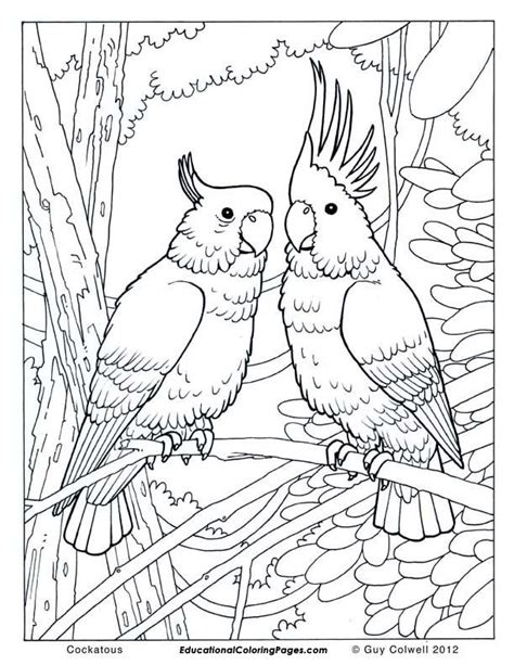 Animal coloring pages free printable animal coloring pages for kids