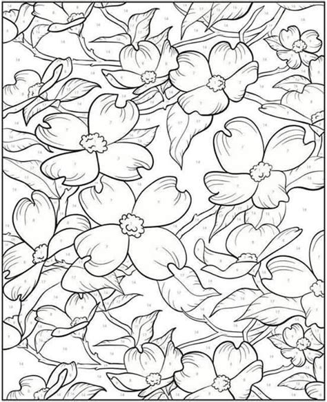 nature scapes coloring pages 17 images about patterns on pinterest coloring free