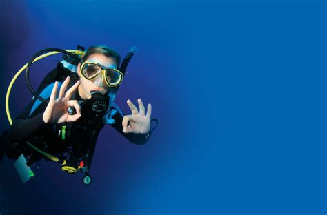 dive trip seafari dive center pattaya diving trips padi courses