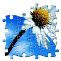 jigsaw puzzle maker to turn photo into puzzle games and puzzles on pinterest games games games game