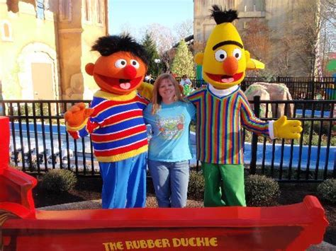 Busch Gardens Sesame by Adults And Can Ride In Sesame Place Picture Of