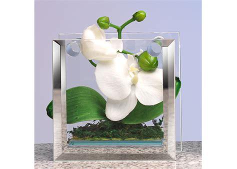 vaso vetro rettangolare vaso vetro rettangolare orchidee 12cm cod 07 15 40