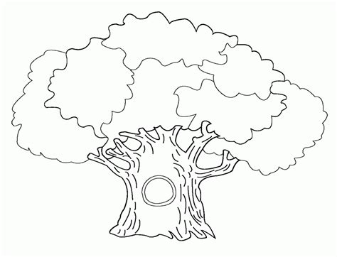 Coloring Page Bare Tree Az Coloring Pages Bare Tree Coloring Page