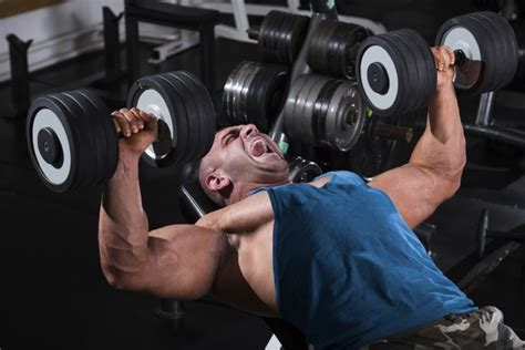 bench press for hypertrophy splash training specific periodized linear advanced