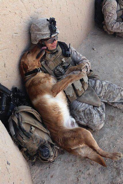 veterans therapy act best buds freedom my best friends and best bud