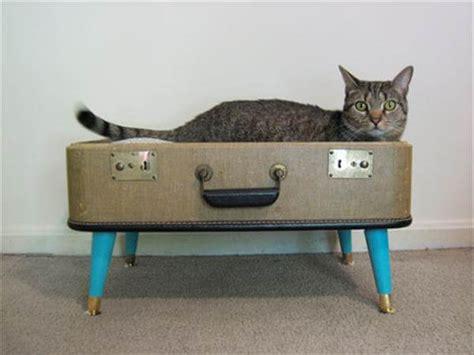 diy cat beds 10 diy cat bed ideas diy and crafts