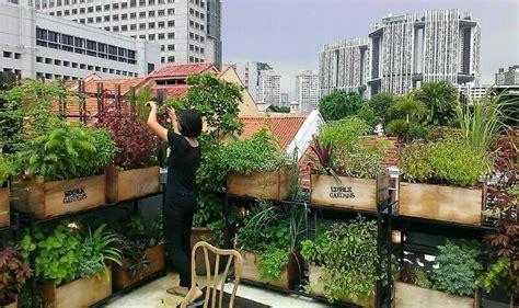 edible rooftop google search rooftop garden urban