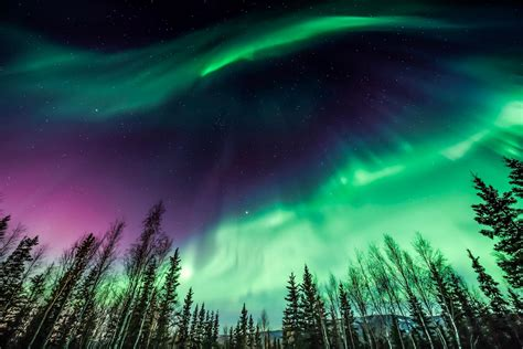 can you see the northern lights in fairbanks alaska your guide to seeing the northern lights in alaska