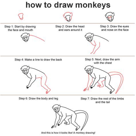 how to create doodle form i will help you i will everythings i like with you