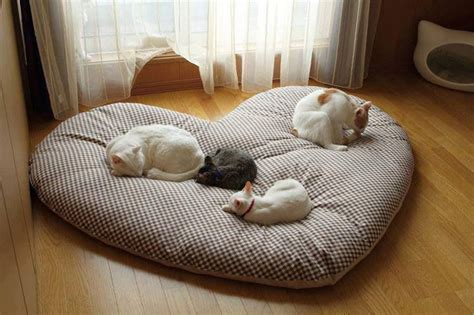 cute cat beds cat tree cat cushion cat pillow designer cat bed and furniture cat dog beds