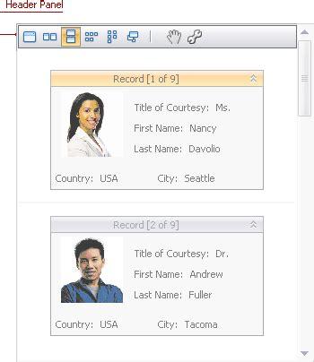 devexpress layout view carousel header panel data grid winforms controls devexpress help