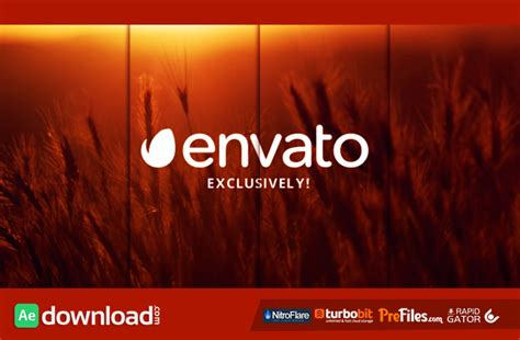 elegant slideshow 11884423 videohive free download