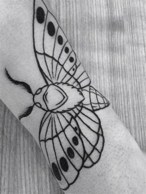 moth tattoo 25 best ideas about moth on moth