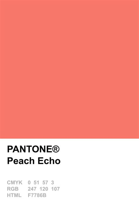 peach pantone pantone 2016 peach echo paletita pinterest pantone