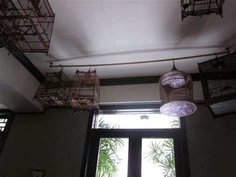 Hanging Bird Cages From Ceiling by Bird Cages Hanging From The Ceiling Picture Of Thai Lao