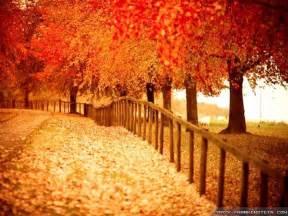 beautiful wallpapers beautiful autumn wallpapers wallpaper cave