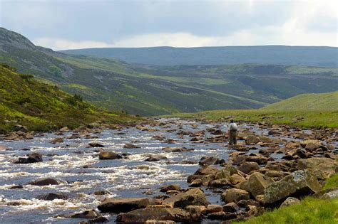 stillwater yorkies river tees fly fishing guide teesdale