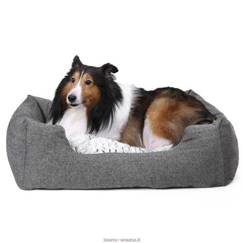 cuscino per cani taglia grande bello 5 cuscini cani grandi jake vintage