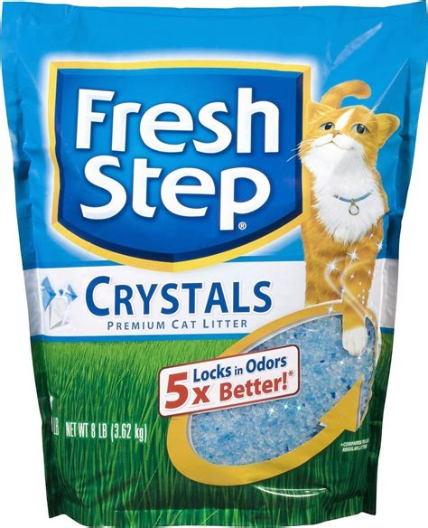 cat litter brands   reviews ratings