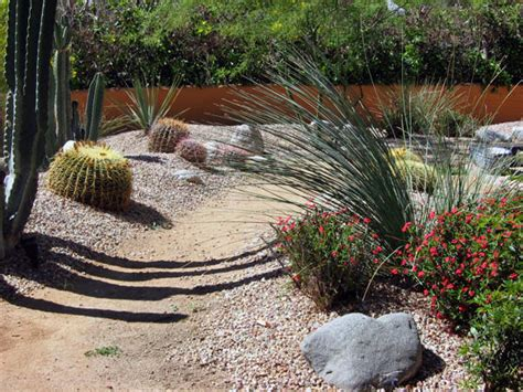 Desert Landscape Ideas For Backyards by Some Unique Desert Landscaping Ideas Interior Design