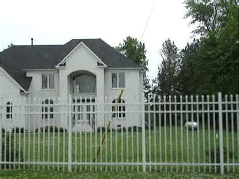 michael vick dog fighting house how michael vick s former dogs got a second chance at life supersoul sunday own