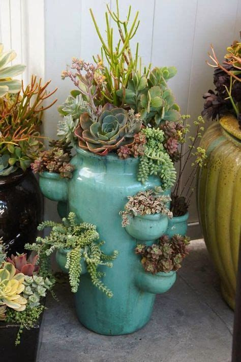 Strawberry Planters For Sale by 25 Best Ideas About Strawberry Pots On Plant