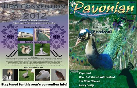 backyard poultry magazine new united peafowl association magazine editor