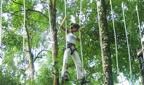 Trees Top Murah bali treetop adventure park bedugul harga tiket murah