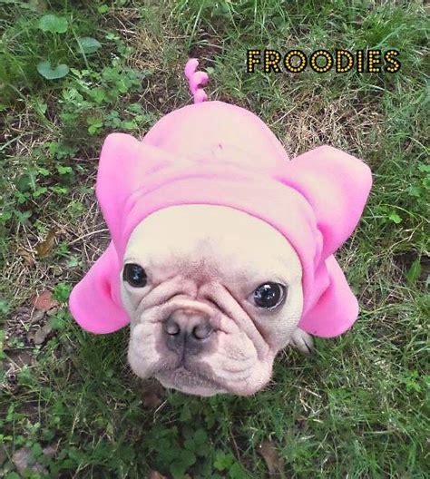 pink pug bulldog boston terrier pug froodies hoodies costume pink