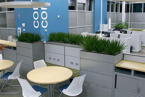 plants for office office plants plant friends llc