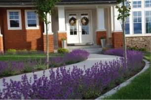 Lavender Garden Ideas Lavender Walkway Landscape Ideas Pinterest