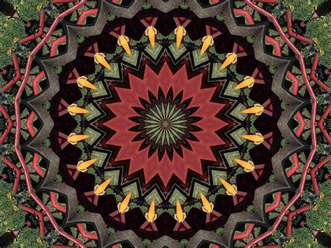 definition of radial pattern in art principles of design balance precision art blog