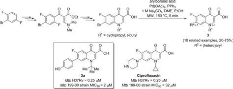 Suzuki Cross Coupling Reaction Preparation Of New Fluoroquinolones Via Microwave Assisted