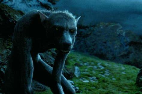 libro i had a black dog di matthew weerwolf harry potter wiki fandom powered by wikia