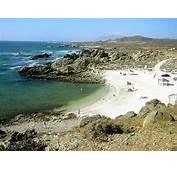 Descubre Chile  Playa La Poza Comunidad Ecol&243gica San