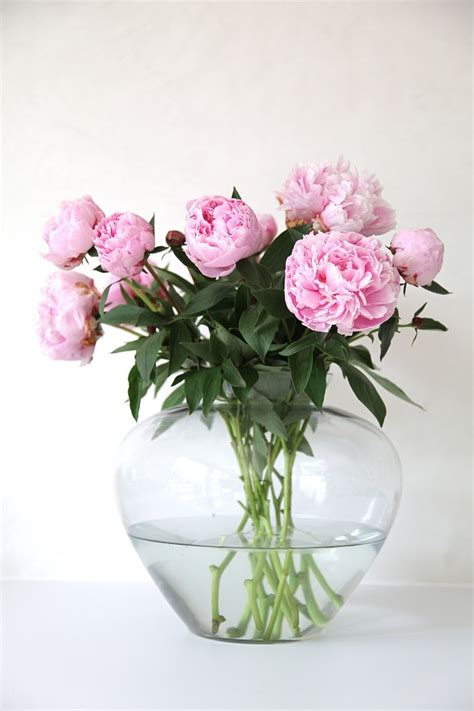 Deko Mit Blumen 2289 by Tips For Arranging Flowers Coming Soon Glass Vase And