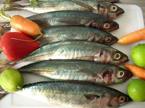 alimentos con mercurio pescado y mercurio 191 estamos envenenados nutricionista