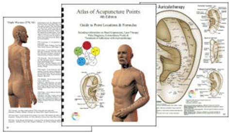 atlas of acupuncture points chiro acupuncture and meridian charts and posters