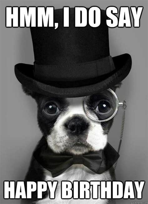Birthday Dog Meme - pinterest the world s catalog of ideas