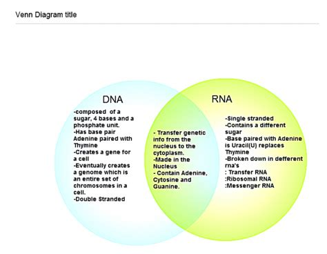venn diagram comparing dna and rna venn diagram dna and rna delightful design compare dna rna